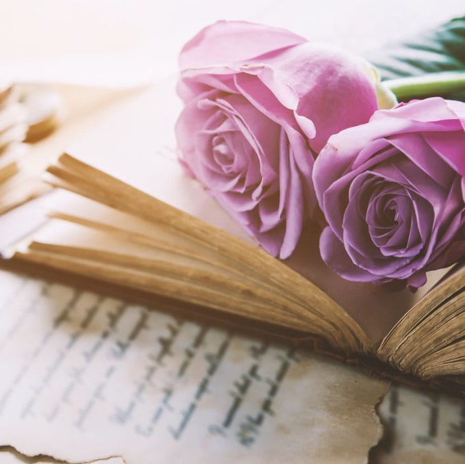 beautiful antique book with pink roses