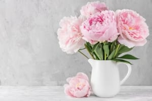 Peonies - symbolize a happy marriage