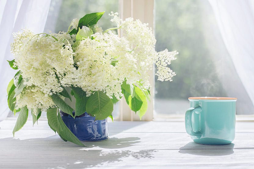 coffee and flowers on a clear spring morning